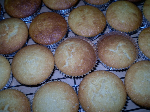 Cupcakes out of the oven